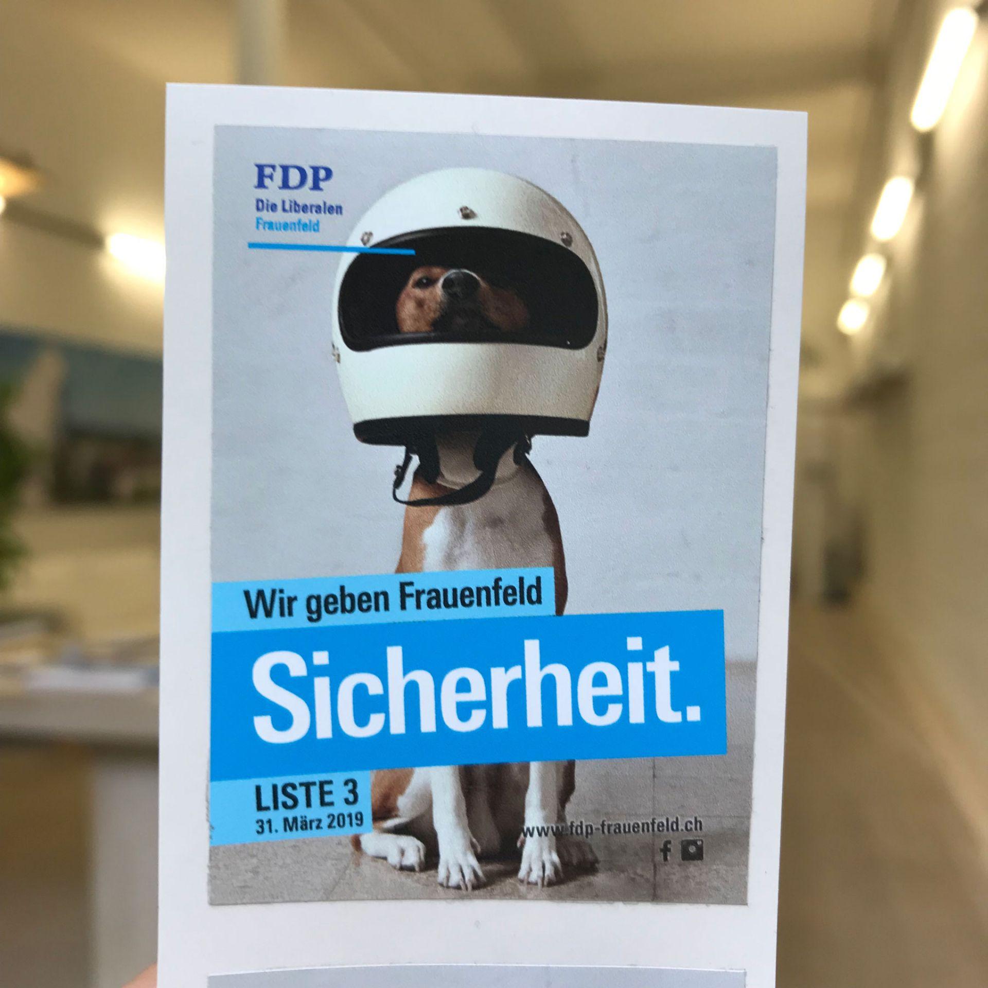 Gemeinderatswahlen Frauenfeld 2019